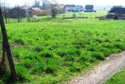 Pojatno građ.zemljište 1991 m2 – 50.000,00 €