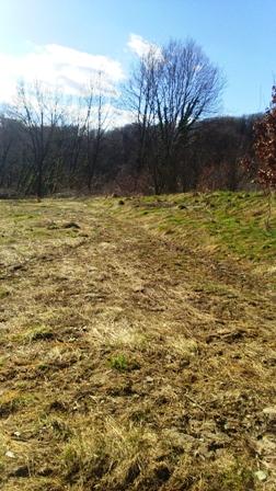 Pojatno – zemljište 2284 m2 – 13.000,00 €