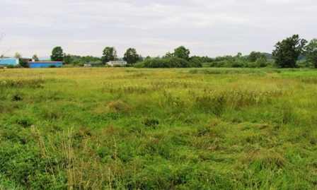 Jakovlje – građevinsko zemljište 5200 m2 – 35.000,00 €