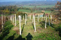 Vukovo Selo – građevinsko zemljište 978 m2 – 12.000,00 €