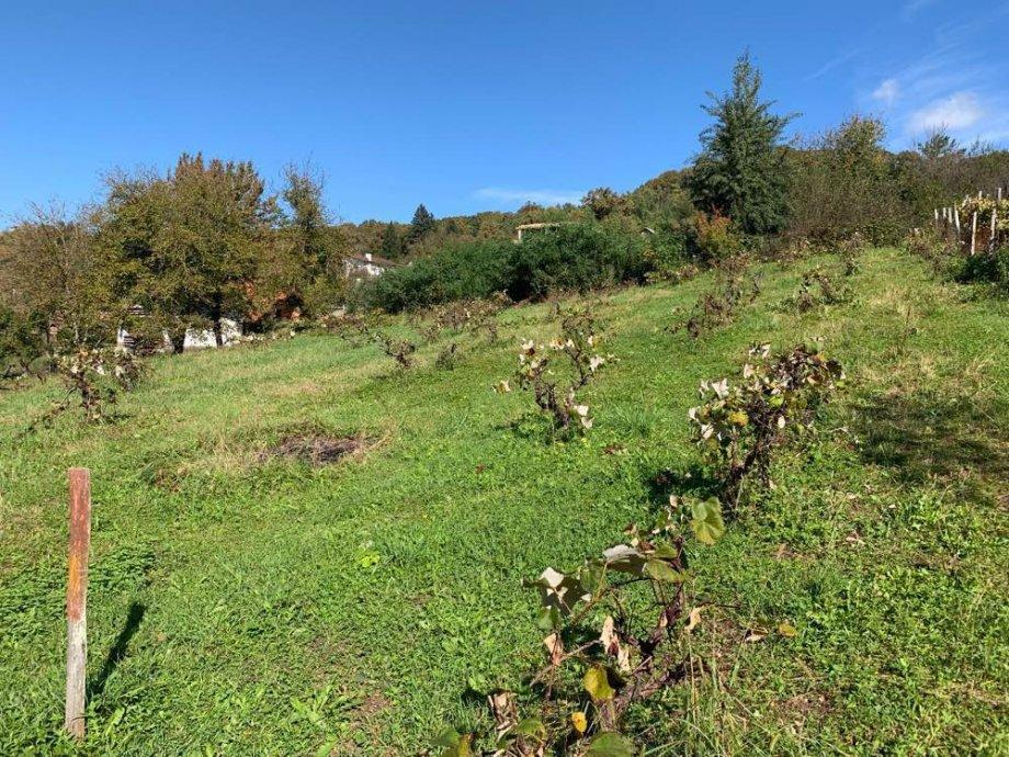 Brdovec- građevinsko zemljište 1125 m2 – 39.000,00 €